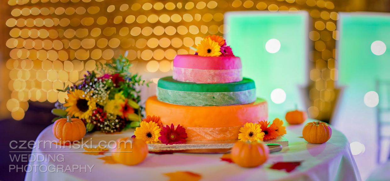 wedding-cake-photography